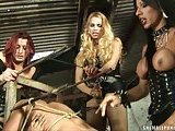 Tranny Hot Group Sex