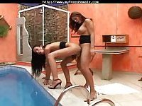 Sexy latina Tgirls fuck poolside
