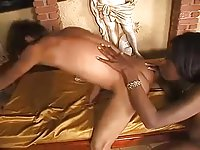Ebony Tranny Pounding White Guy