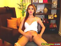 Shemale Babe Strokes her Dick