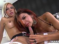 Latin Shemale Babes Fuck Each Other