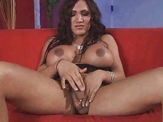 Busty gorgeous shemale sucks black cock