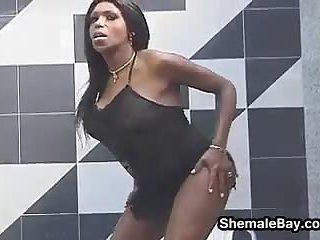 White Guy Loving Black Shemale Cock